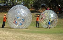 Grass Zorb Ball