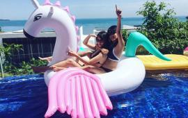 Candy Pegasus Float
