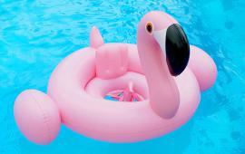 Baby Pink Flamingo Float